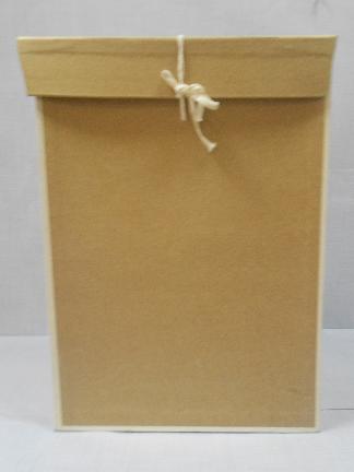 Архивный короб оклеенный крафт-бумагой