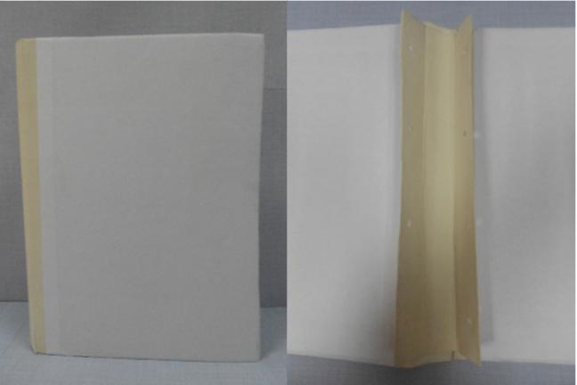 Архивная папка с 2 гребешками (4 отверстия). Корешок из коленкора (толщина корешка на ваш выбор). Печать вашего текста на обложке.